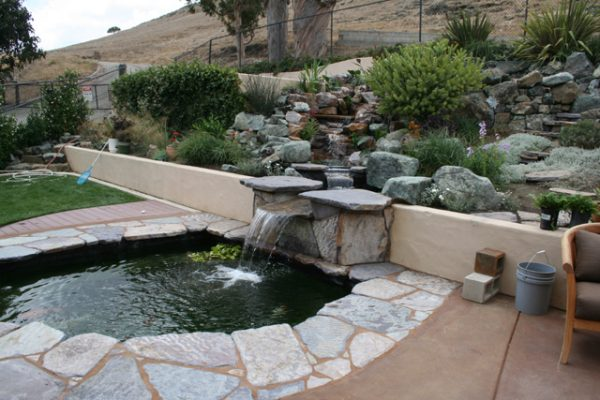 backyard stream and koi pond