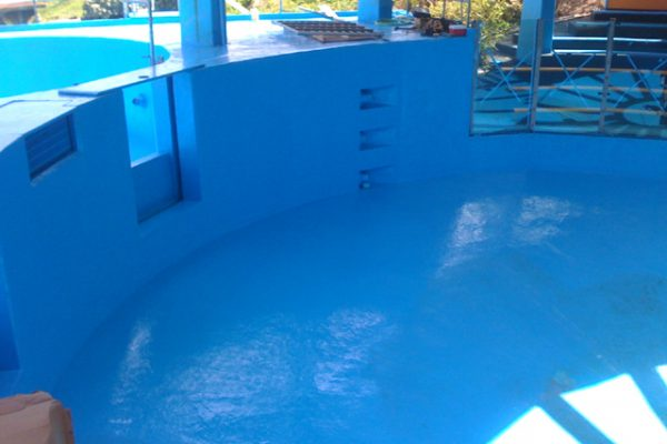 dolphin pool lined with non-toxic blue pond armor